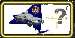 NYS Police Numbers